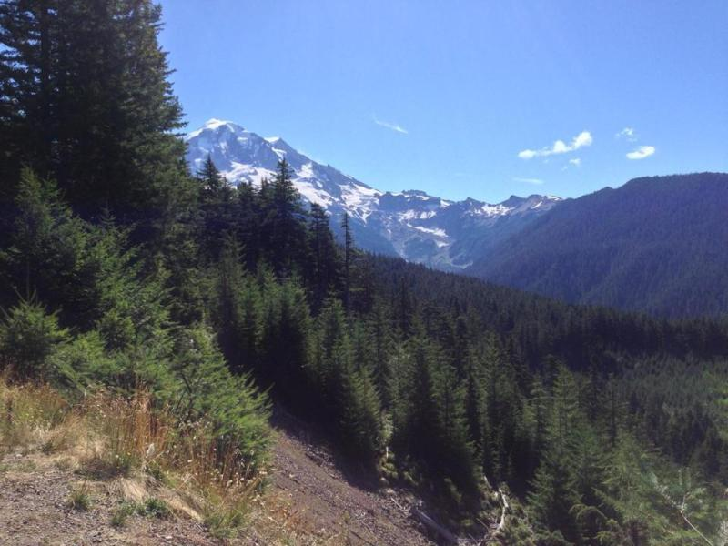 Mount Rainier day hike